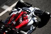 F1: Sauber
