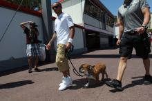 22.05.2013- Lewis Hamilton (GBR) Mercedes AMG F1 W04 and his dog, Roscoe
