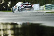 iMatt Neal (GBR) Halfords Yuasa Racing Honda Civic Type R